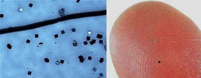 میکرو چیپ های RFID امواج رادیویی Radio Frequency Identification / RFID