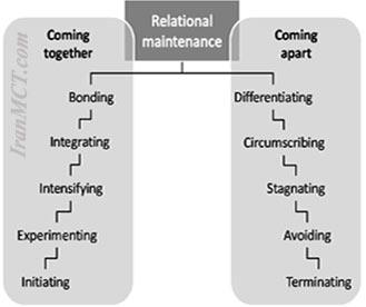 relationship model Knapp مدل مارک نپ رابطه احساسی بین برند و مشتری عشق به برند