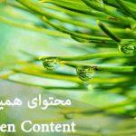 محتوای همیشهسبز Evergreen Content چیست؟