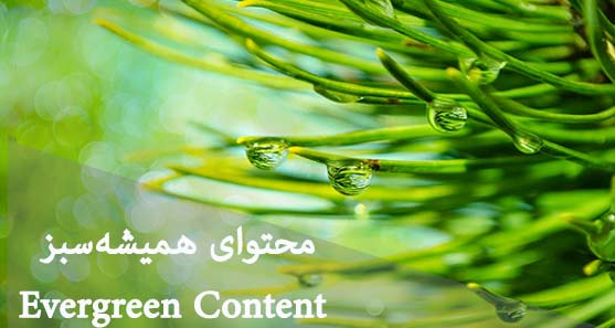 محتوای همیشه سبز Evergreen Content