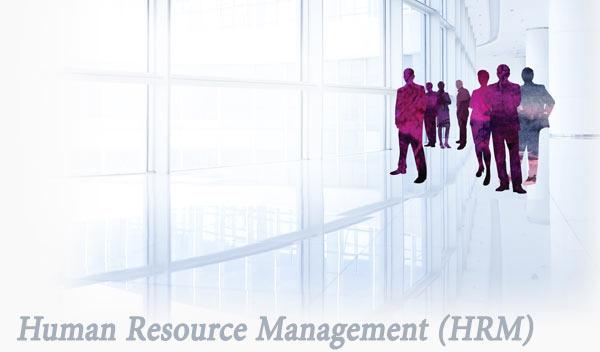 مشاوره مدیریت منابع انسانی HRM