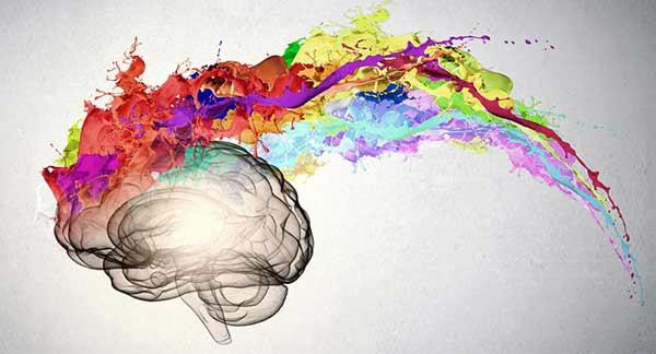 روانشناسی مصرف کننده Consumer Psychology شناخت رفتار مصرف کننده Consumer Behavior