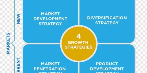 Market Penetration Diversification Market Development Marketing Strategy Ansoff Matrix برنامه بازاریابی استراتژی ماتریس آنسوف